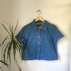 Vintage Denim Collared Button Up Crop